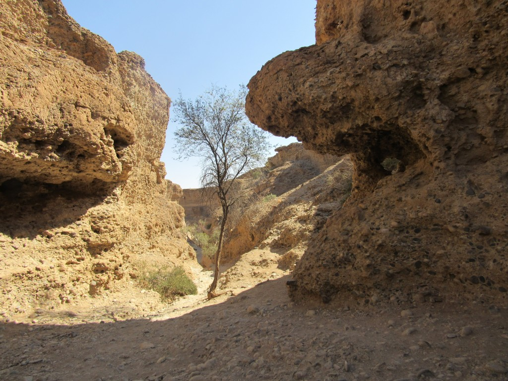 Inside Sesriem Canyon