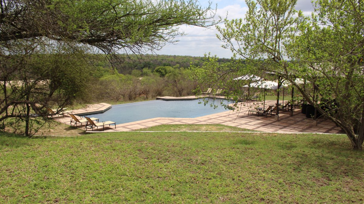 Infinity pool in the bush, Kirkman's Kamp, Sabi Sand private reserve